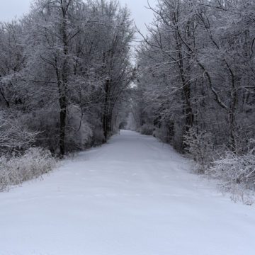 021219_jane-addams-trail-winter