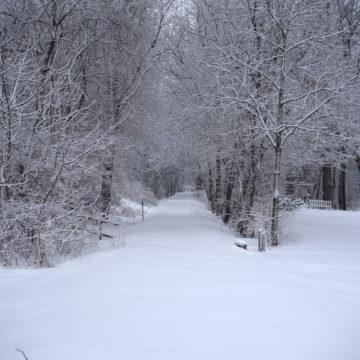 021219_jane-addams-trail-winter-4